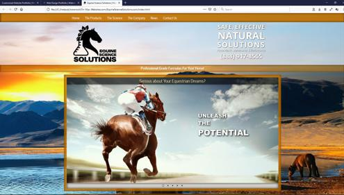 Professional Customized Website Services in Colorado